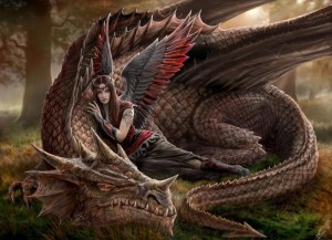 Dragon and Fey4